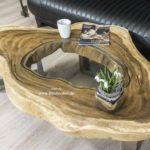 Beliebter Wohnzimmertisch Baumstamm mit Glas